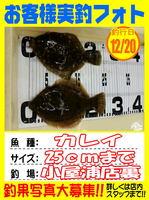okyakusama-20141220-koyaura-karei.jpg