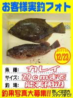 okyakusama-20141223koyaura-Karei.jpg