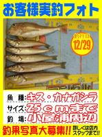 okyakusama-20141229koyaura-kisu.jpg