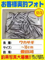 photo-okyakusama-201401203-kikugawa-wacasagi01.jpg