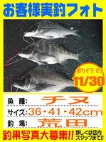 photo-okyakusama-20141130-hikoshima-tinu.jpg
