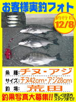 photo-okyakusama-20141208-hikoshima-tinu.jpg