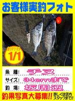 okyakusama-20150101-koyaura-tinu.jpg