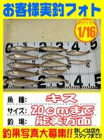 okyakusama-20150116-koyaura-kisu.jpg