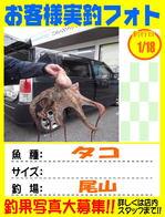 photo-okyakusama-20150118-kikugawa-taco.jpg