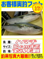 okyakusama-20150222koyaura-hamati.jpg