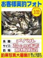 okyakusama-20150222koyaura-mebaru2.jpg