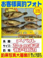okyakusama-20150225-koyaura-mebaru.jpg