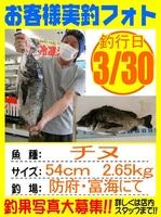 20150330-yamaguchi-tinu.jpg