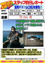 blog-20150312-shinshimo-ikeda.jpg