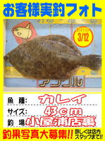 okyakusama-20150312-koyaura-karei2.jpg