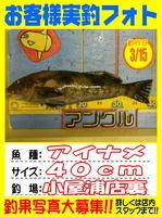 okyakusama-20150317koyaura-ainame.jpg