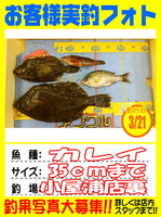 okyakusama-20150321-koyaura-karei1.jpg