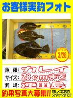 okyakusama-20150326-koyaura-karei02.jpg