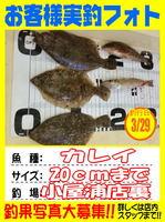 okyakusama-20150329koyaura-karei.jpg