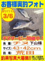 photo-okyakusama-20150306-hikoshima-tinu.jpg