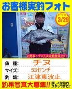 photo-okyakusama-20150329-goutsu-chinu53.jpg