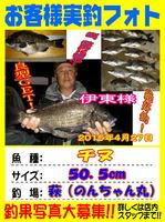 blog-choufu-20150426-tinu.jpg
