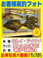 okyakusama-20150405-koyaura-karei1.jpg