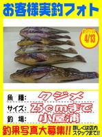 okyakusama-20150413-koyaura-kujime01.jpg