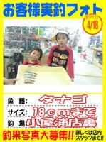 okyakusama-20150418-koyaura-tanago2.jpg