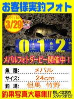 photo-okyakusama-20150401-toyooka-01.jpg