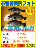 photo-okyakusama-20150413-toyooka-01.jpg