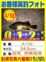 photo-okyakusama-20150418-toyooka-01.jpg