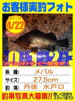 photo-okyakusama-20150422-toyooka-01.jpg