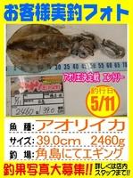 20150511-yamaguchi-hasimoto.jpg