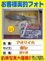 okyakusama-20150502-tsushima-aorida.jpg