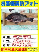 okyakusama-20150515-koyaura-tinu1.jpg
