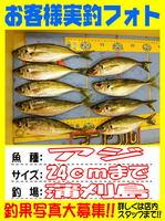 okyakusama-20150524koyaura-aji1.jpg