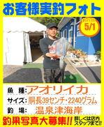 photo-okyakusama-20150501-goutsu-aoriika.jpg