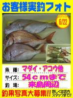 okyakusama-20150623-niho-2.jpg