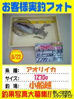 okyakusama-tsushima-20150622-koga.jpg