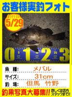 photo-okyakusama-20150529-toyooka-02.jpg