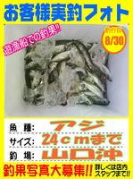 news-20150831-niho-okyakusama1.jpg