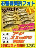 okyakusama-20150815-koyaura-aji.jpg