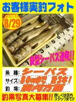 okyakusama-20150829-koyaura-si-basu.jpg