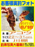 photo-okyakusama-20150818-hikoshima-akou.jpg