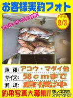 okyakusama-20150904-niho-1.jpg