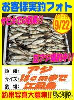 okyakusama-20150922-koyaura-aji.jpg