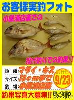 okyakusama-20150923-koyaura-taikisu.jpg