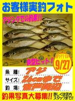 okyakusama-20150927-koyaura-aji.jpg