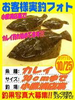 okyakusama-20151025-koyaura-karei.jpg