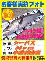 okyakusama-20151030-koyaura-si-basu.jpg