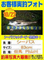 photo-okyakusama-20151022-toyooka-01.jpg
