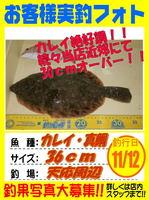 お客様 2015.11.12 カレイ 天応 山部さん.jpg