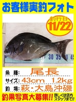 20151122-yamaguchi-onaga.jpg